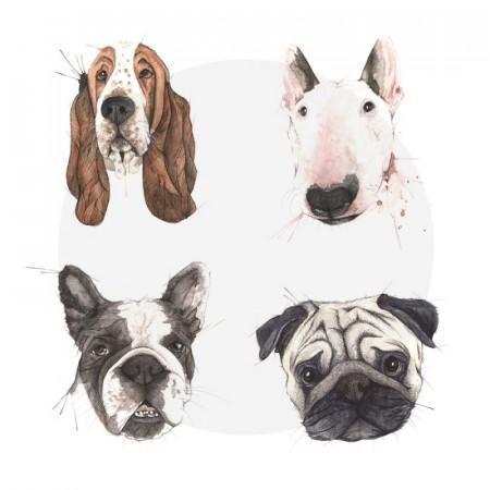 Hundeparken